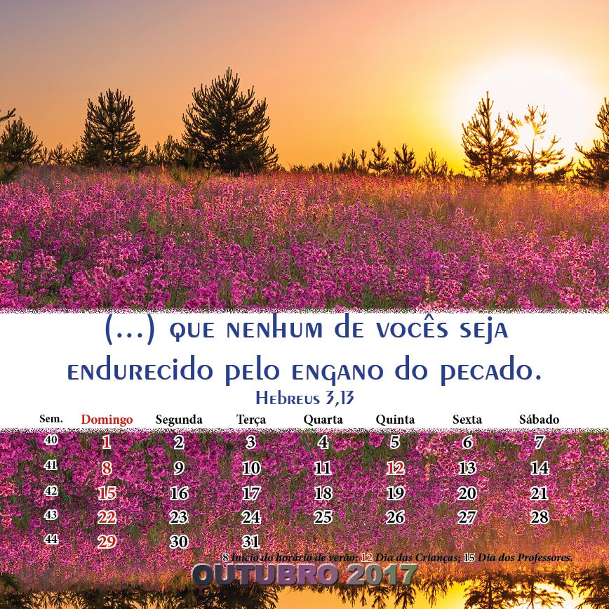 https://www.aaguaviva.com/wp-content/uploads/2017/06/Calendario-2017-Endversion-WEB23.png