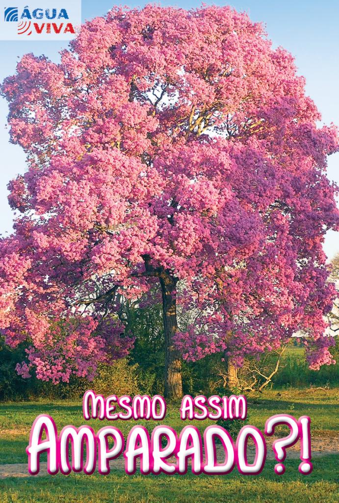https://www.aaguaviva.com/wp-content/uploads/2017/06/Mesmo-assim-amparado-2017-capa-691x1024.png