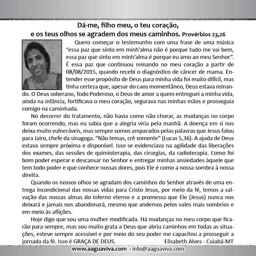 https://www.aaguaviva.com/wp-content/uploads/2017/10/Calendário-2018-x1-Versão-Final-WEB16.png