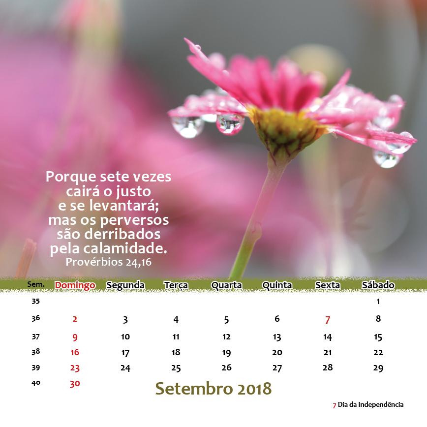 https://www.aaguaviva.com/wp-content/uploads/2017/10/Calendário-2018-x1-Versão-Final-WEB21.png