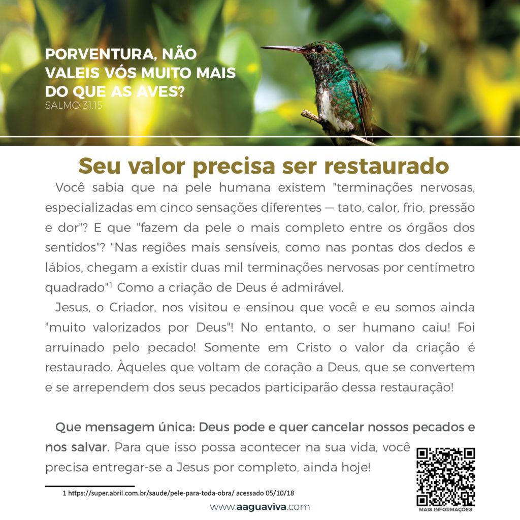 https://www.aaguaviva.com/wp-content/uploads/2018/10/Calendário-terceira-sugestão6-1024x1024.jpg