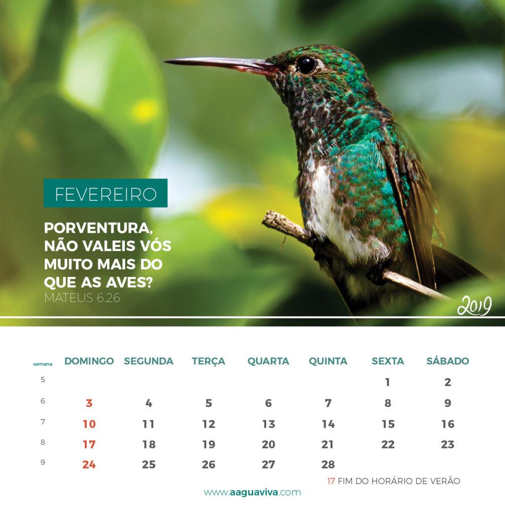 https://www.aaguaviva.com/wp-content/uploads/2018/10/Calendário-terceira-sugestão7-1024x1024.jpg