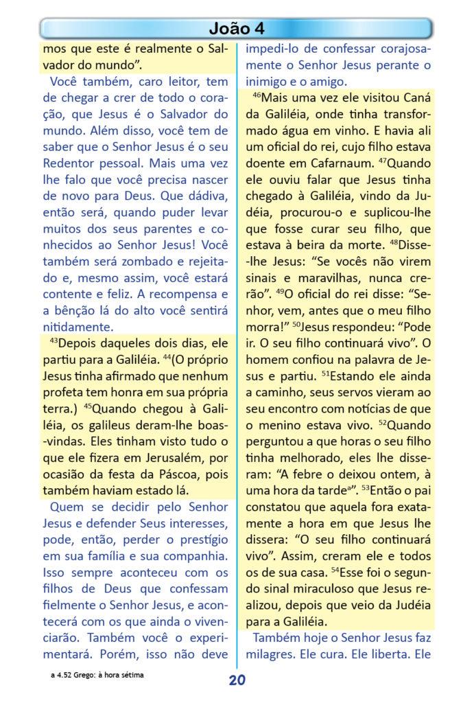 https://www.aaguaviva.com/wp-content/uploads/2018/12/Evangelho-de-Joao-Miolo18-691x1024.jpg