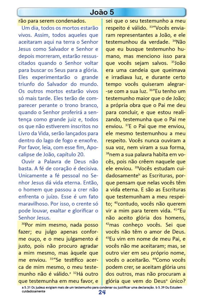 https://www.aaguaviva.com/wp-content/uploads/2018/12/Evangelho-de-Joao-Miolo22-691x1024.jpg