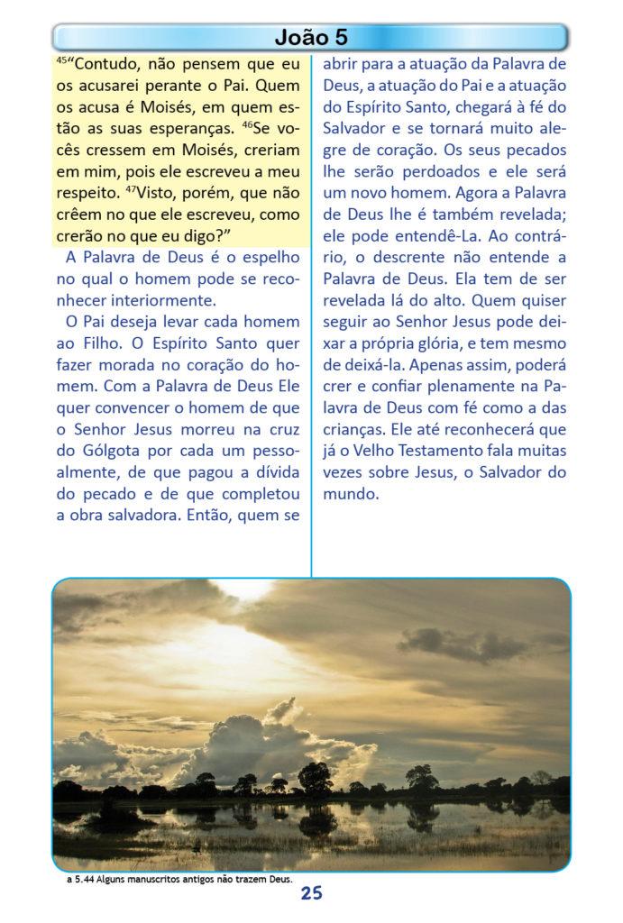 https://www.aaguaviva.com/wp-content/uploads/2018/12/Evangelho-de-Joao-Miolo23-691x1024.jpg