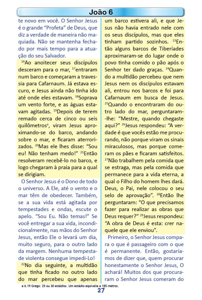 https://www.aaguaviva.com/wp-content/uploads/2018/12/Evangelho-de-Joao-Miolo25-691x1024.jpg