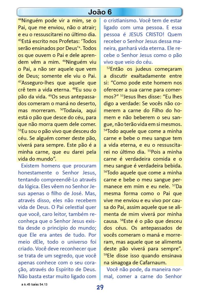 https://www.aaguaviva.com/wp-content/uploads/2018/12/Evangelho-de-Joao-Miolo27-691x1024.jpg