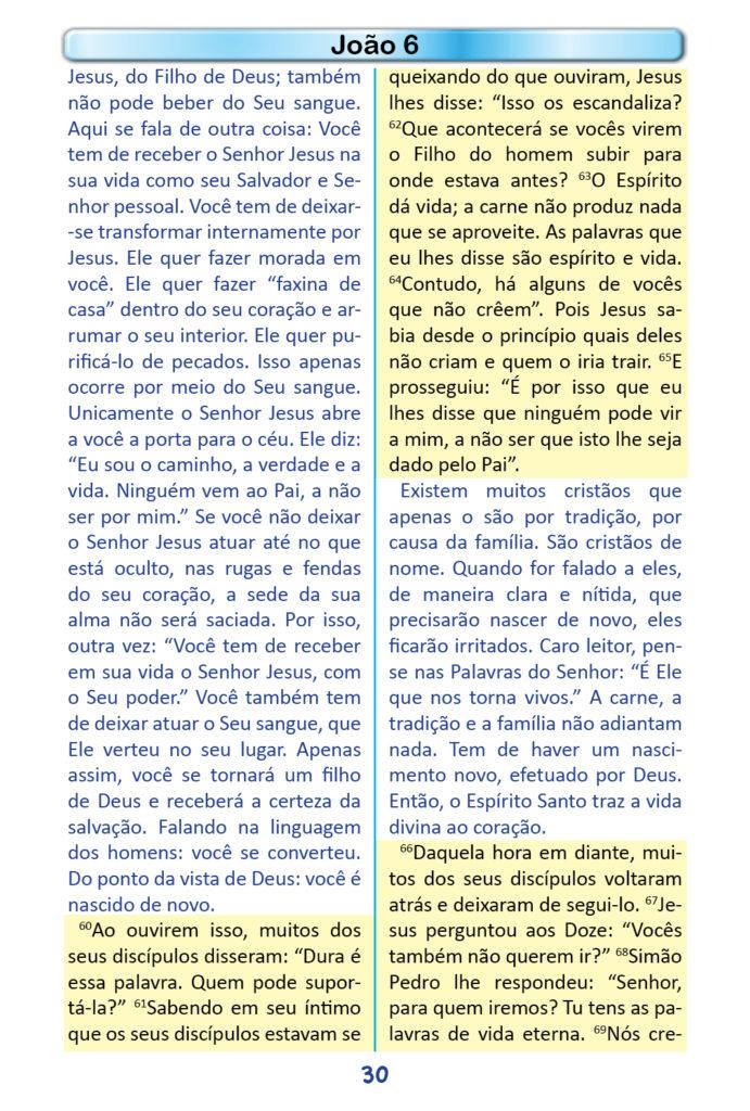 https://www.aaguaviva.com/wp-content/uploads/2018/12/Evangelho-de-Joao-Miolo28-691x1024.jpg