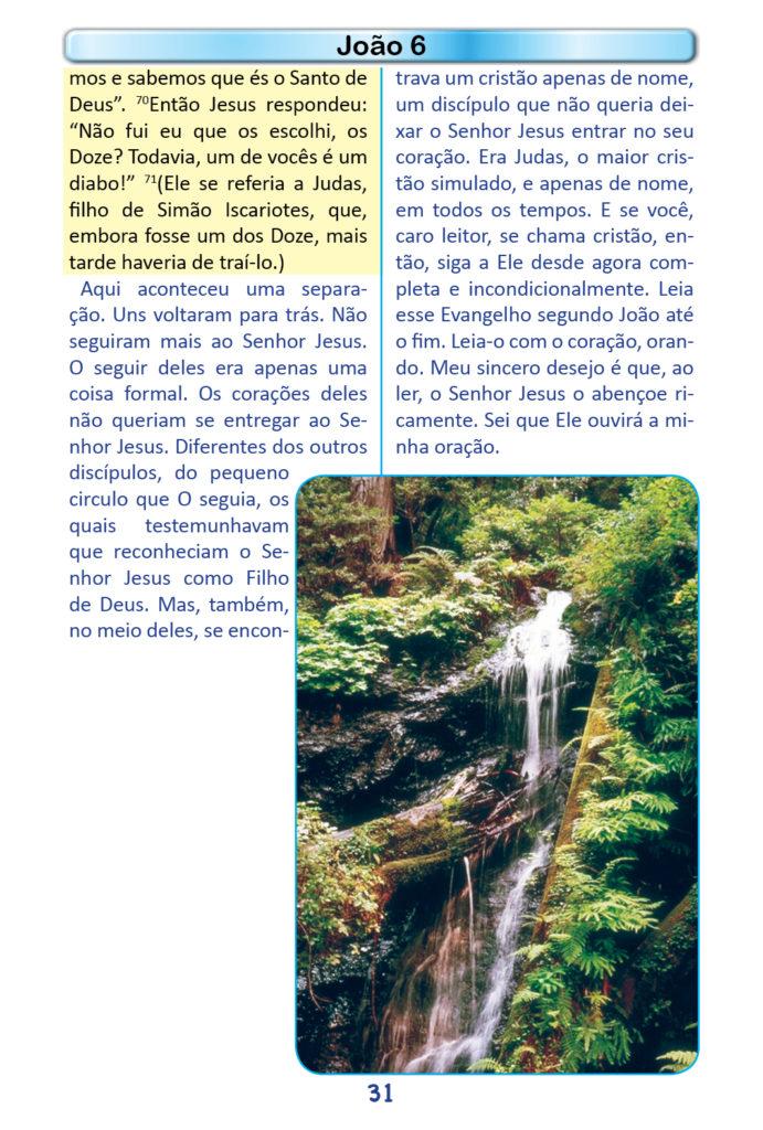 https://www.aaguaviva.com/wp-content/uploads/2018/12/Evangelho-de-Joao-Miolo29-691x1024.jpg