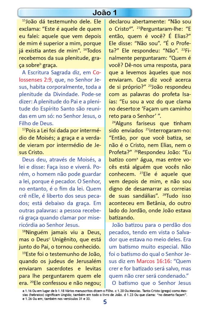 https://www.aaguaviva.com/wp-content/uploads/2018/12/Evangelho-de-Joao-Miolo3-691x1024.jpg