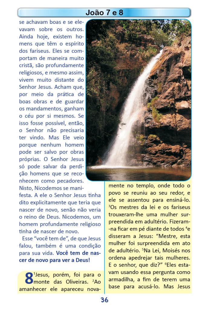 https://www.aaguaviva.com/wp-content/uploads/2018/12/Evangelho-de-Joao-Miolo34-691x1024.jpg