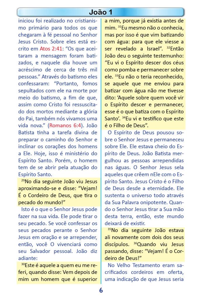 https://www.aaguaviva.com/wp-content/uploads/2018/12/Evangelho-de-Joao-Miolo4-691x1024.jpg