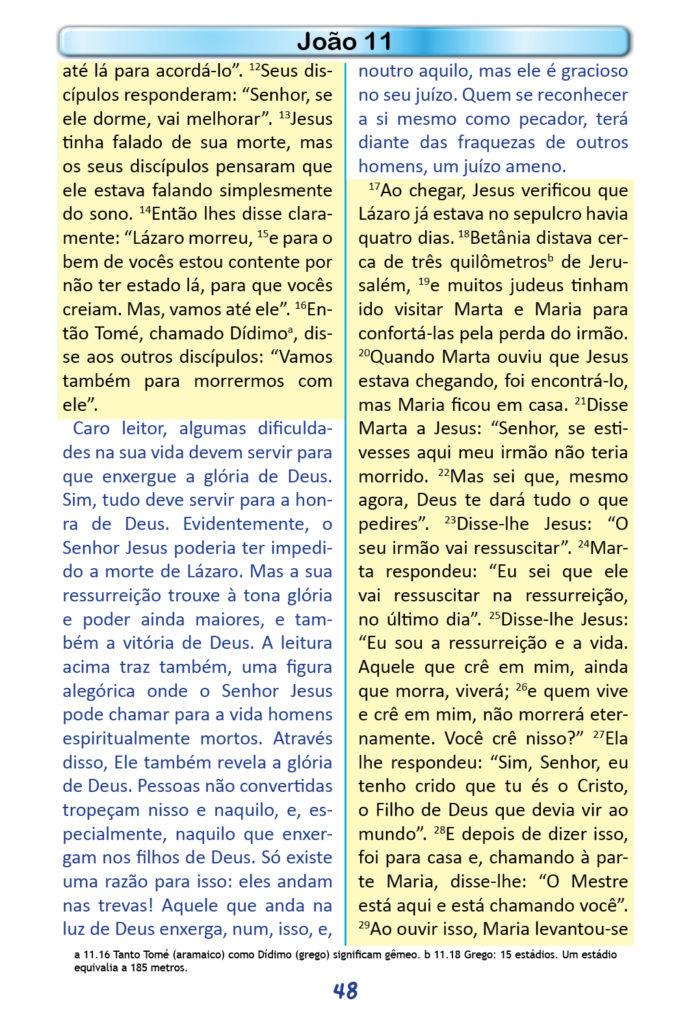 https://www.aaguaviva.com/wp-content/uploads/2018/12/Evangelho-de-Joao-Miolo46-691x1024.jpg