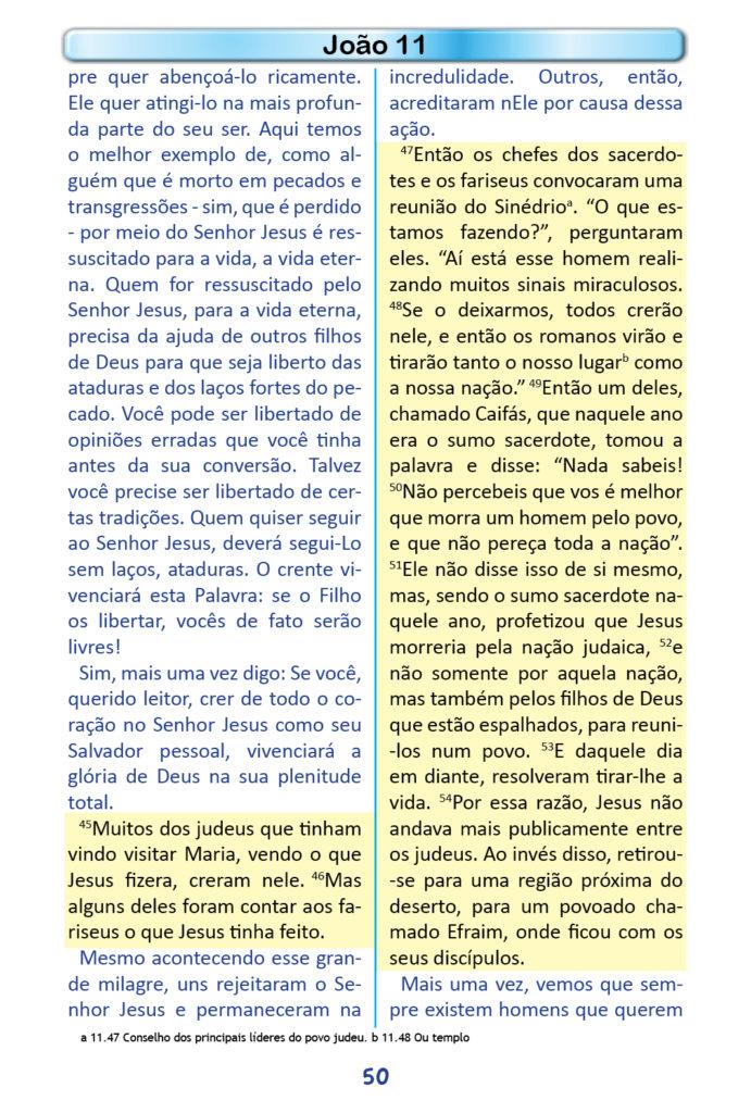 https://www.aaguaviva.com/wp-content/uploads/2018/12/Evangelho-de-Joao-Miolo48-691x1024.jpg
