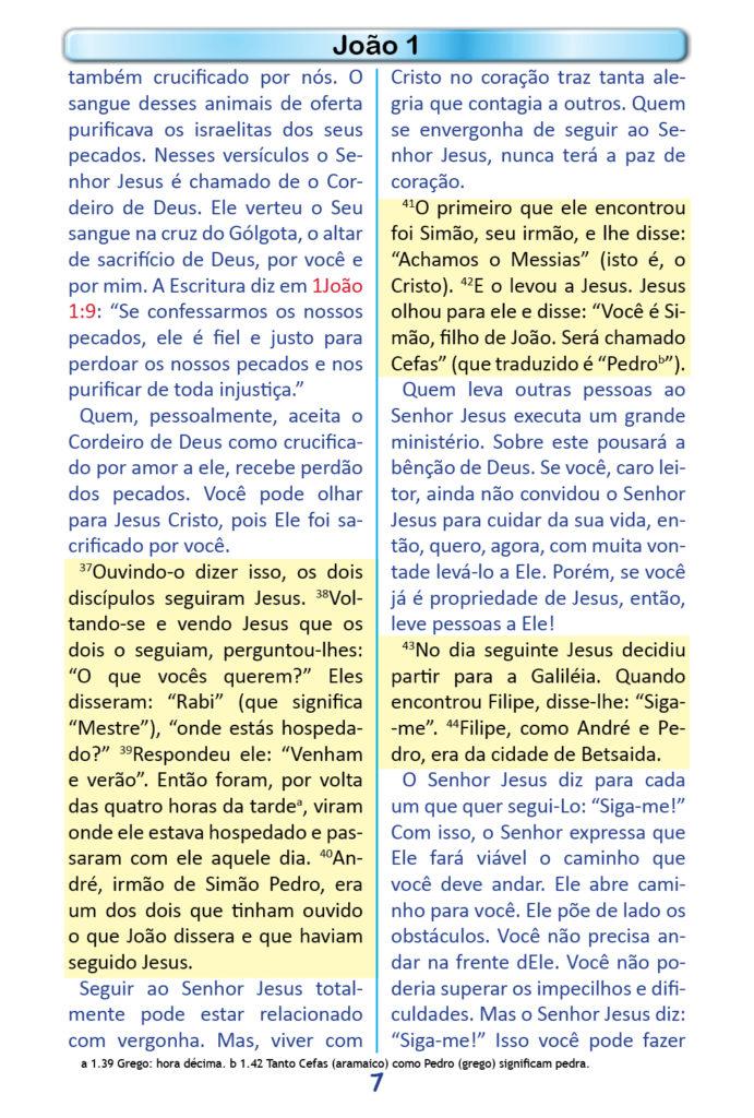 https://www.aaguaviva.com/wp-content/uploads/2018/12/Evangelho-de-Joao-Miolo5-691x1024.jpg