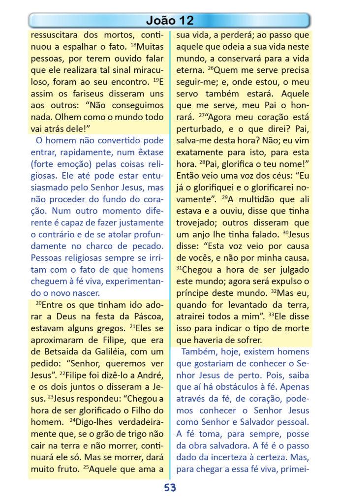 https://www.aaguaviva.com/wp-content/uploads/2018/12/Evangelho-de-Joao-Miolo51-691x1024.jpg
