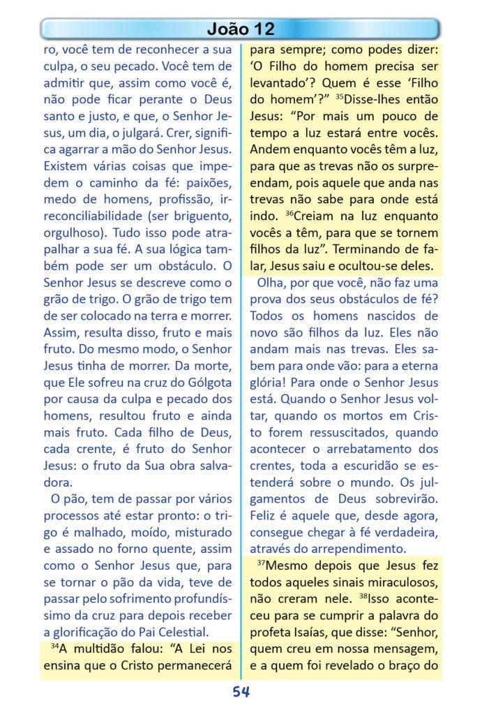 https://www.aaguaviva.com/wp-content/uploads/2018/12/Evangelho-de-Joao-Miolo52-691x1024.jpg