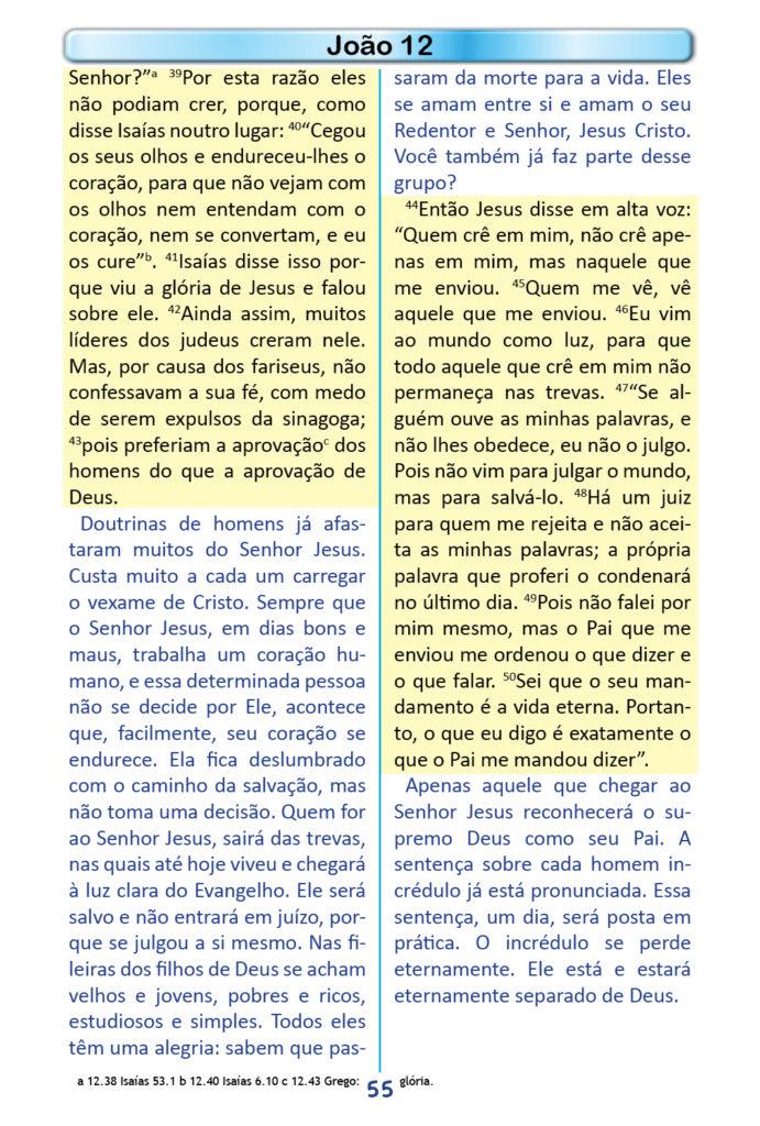 https://www.aaguaviva.com/wp-content/uploads/2018/12/Evangelho-de-Joao-Miolo53-691x1024.jpg