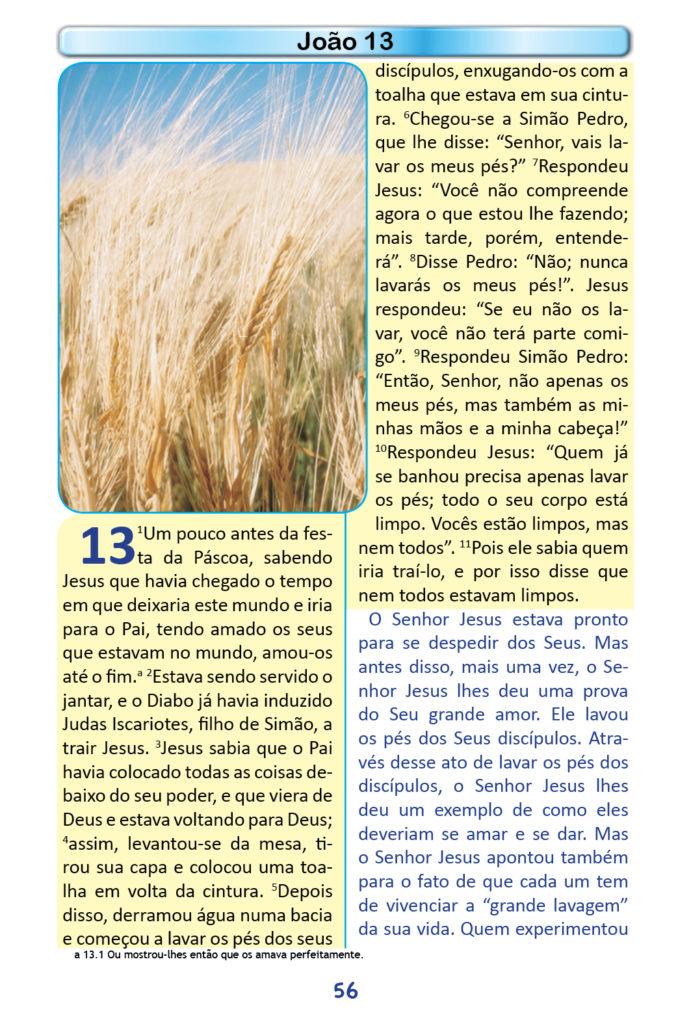 https://www.aaguaviva.com/wp-content/uploads/2018/12/Evangelho-de-Joao-Miolo54-691x1024.jpg