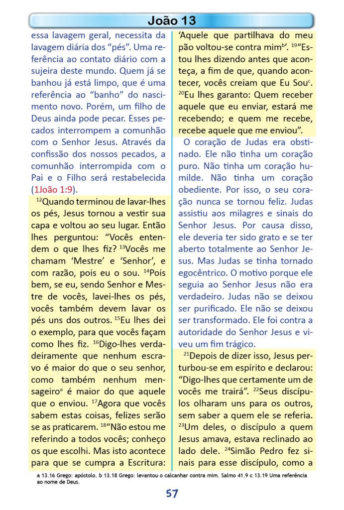 https://www.aaguaviva.com/wp-content/uploads/2018/12/Evangelho-de-Joao-Miolo55-691x1024.jpg