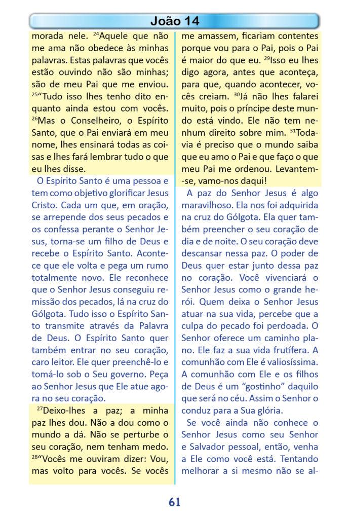 https://www.aaguaviva.com/wp-content/uploads/2018/12/Evangelho-de-Joao-Miolo59-691x1024.jpg