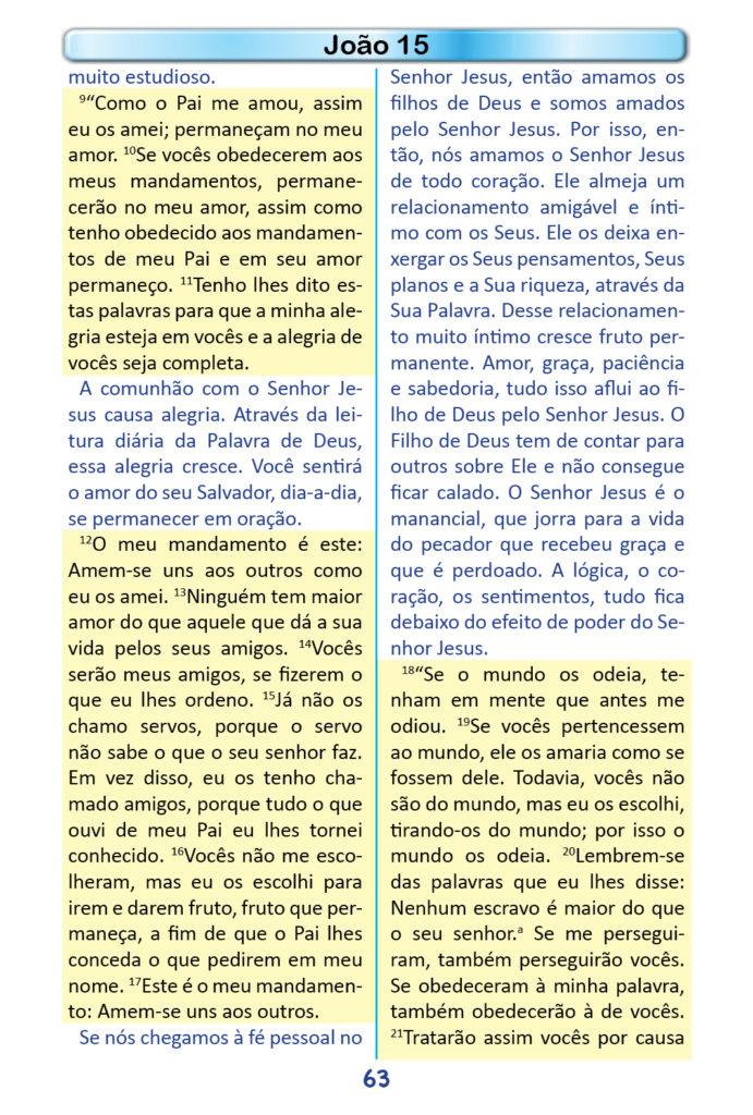 https://www.aaguaviva.com/wp-content/uploads/2018/12/Evangelho-de-Joao-Miolo61-691x1024.jpg