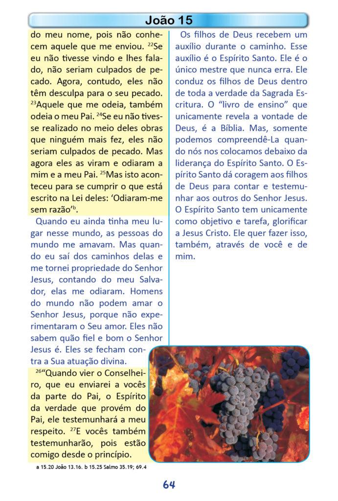 https://www.aaguaviva.com/wp-content/uploads/2018/12/Evangelho-de-Joao-Miolo62-691x1024.jpg