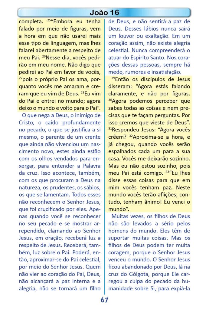 https://www.aaguaviva.com/wp-content/uploads/2018/12/Evangelho-de-Joao-Miolo65-691x1024.jpg