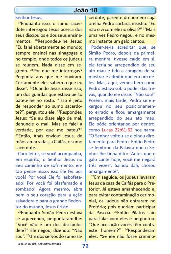 https://www.aaguaviva.com/wp-content/uploads/2018/12/Evangelho-de-Joao-Miolo70-691x1024.jpg