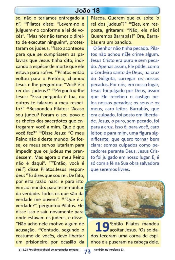 https://www.aaguaviva.com/wp-content/uploads/2018/12/Evangelho-de-Joao-Miolo71-691x1024.jpg