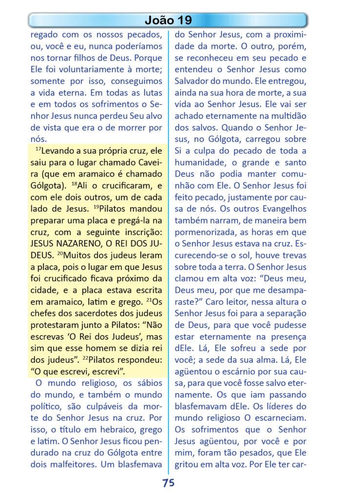 https://www.aaguaviva.com/wp-content/uploads/2018/12/Evangelho-de-Joao-Miolo73-691x1024.jpg
