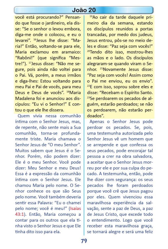 https://www.aaguaviva.com/wp-content/uploads/2018/12/Evangelho-de-Joao-Miolo77-691x1024.jpg