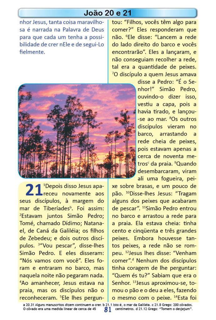 https://www.aaguaviva.com/wp-content/uploads/2018/12/Evangelho-de-Joao-Miolo79-691x1024.jpg
