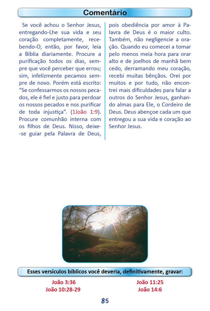 https://www.aaguaviva.com/wp-content/uploads/2018/12/Evangelho-de-Joao-Miolo83-691x1024.jpg