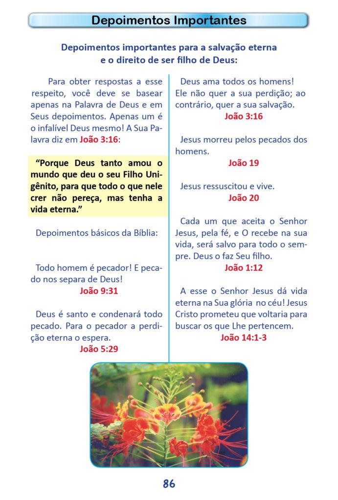 https://www.aaguaviva.com/wp-content/uploads/2018/12/Evangelho-de-Joao-Miolo84-691x1024.jpg