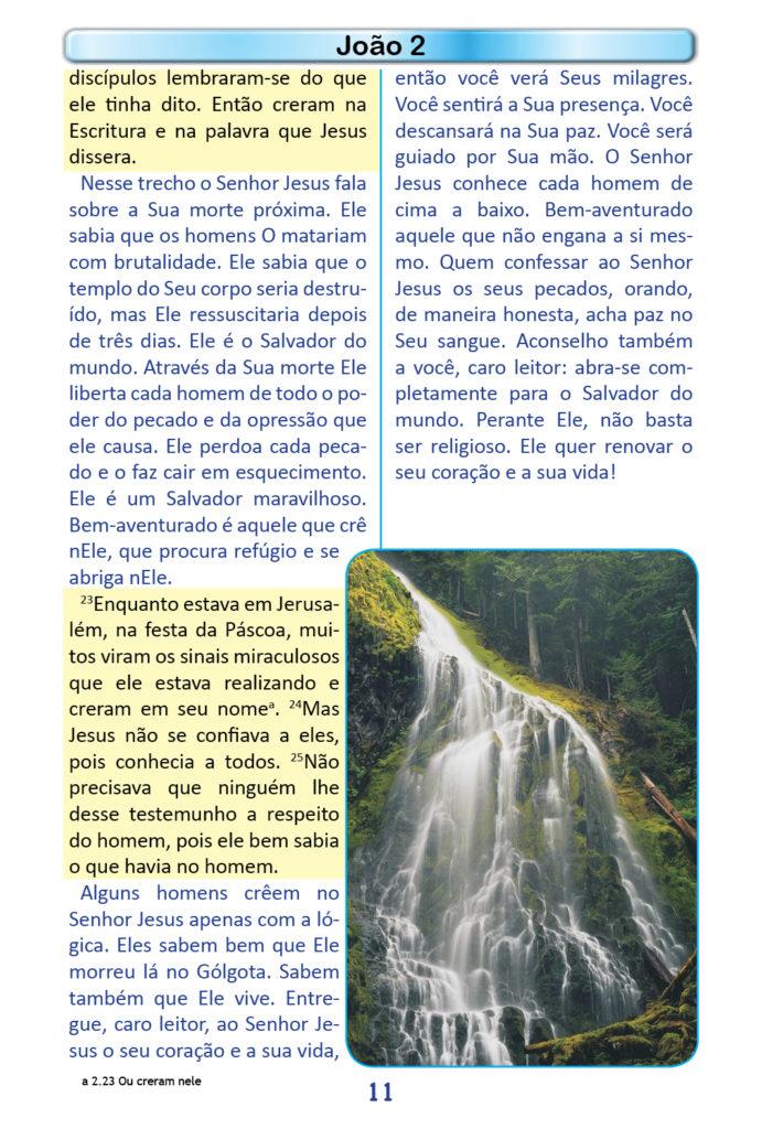 https://www.aaguaviva.com/wp-content/uploads/2018/12/Evangelho-de-Joao-Miolo9-691x1024.jpg