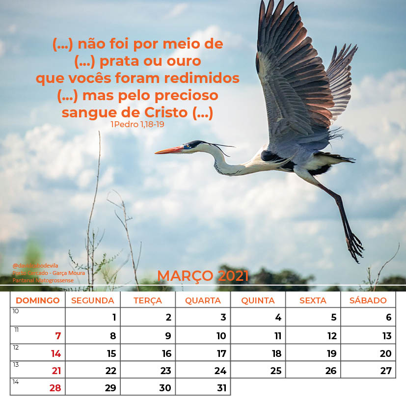 https://www.aaguaviva.com/wp-content/uploads/2020/08/Calendario-2021-ICE-Vida-Nova-Site-AAV10.jpg
