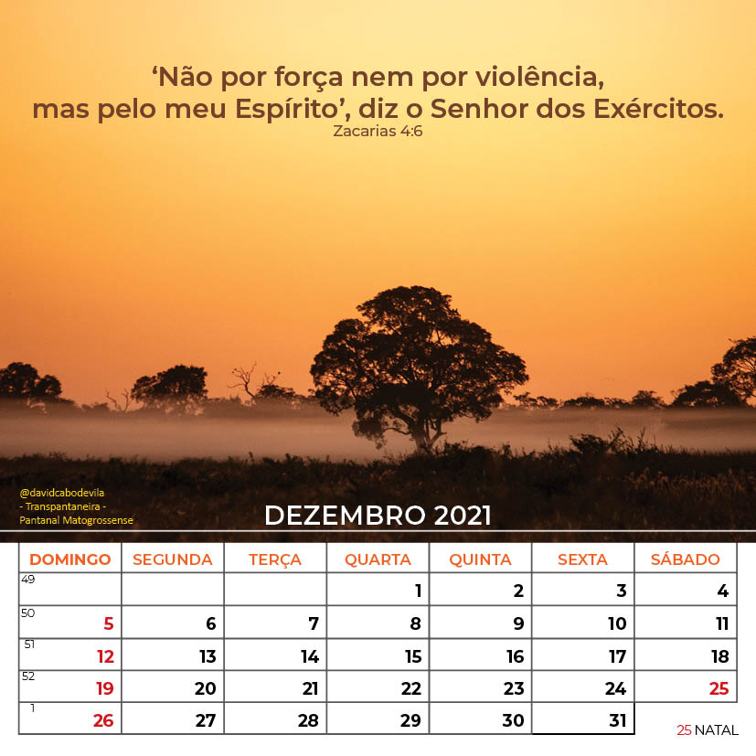 https://www.aaguaviva.com/wp-content/uploads/2020/08/Calendario-2021-ICE-Vida-Nova-Site-AAV28.jpg