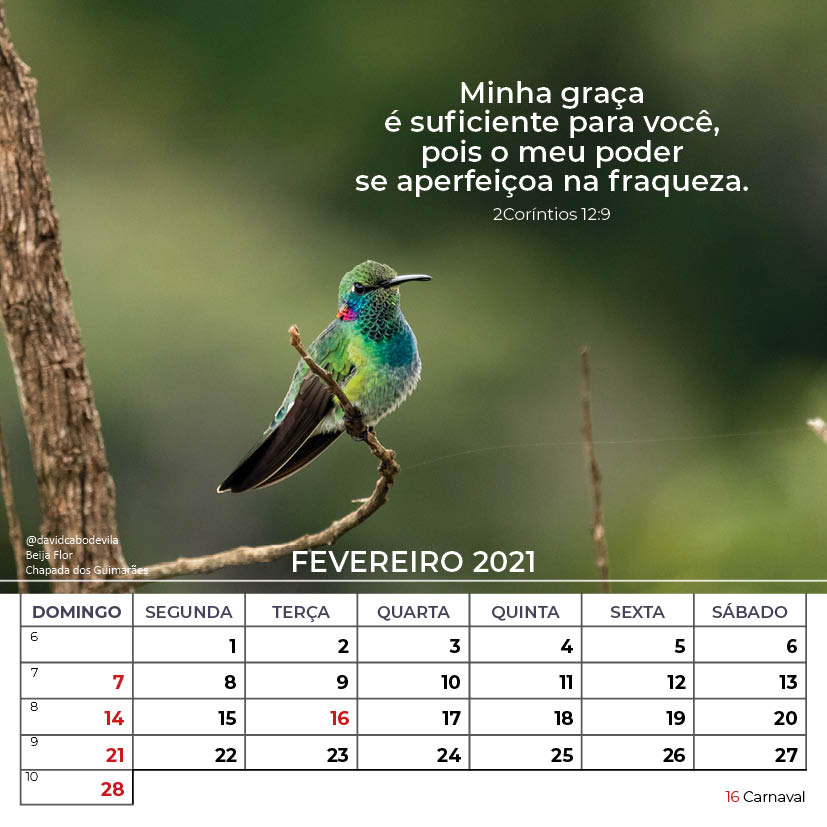 https://www.aaguaviva.com/wp-content/uploads/2020/08/Calendario-2021-ICE-Vida-Nova-Site-AAV8.jpg